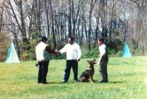 dog-protection11