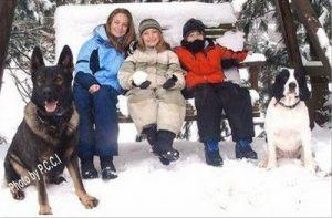 dog-protection-training04