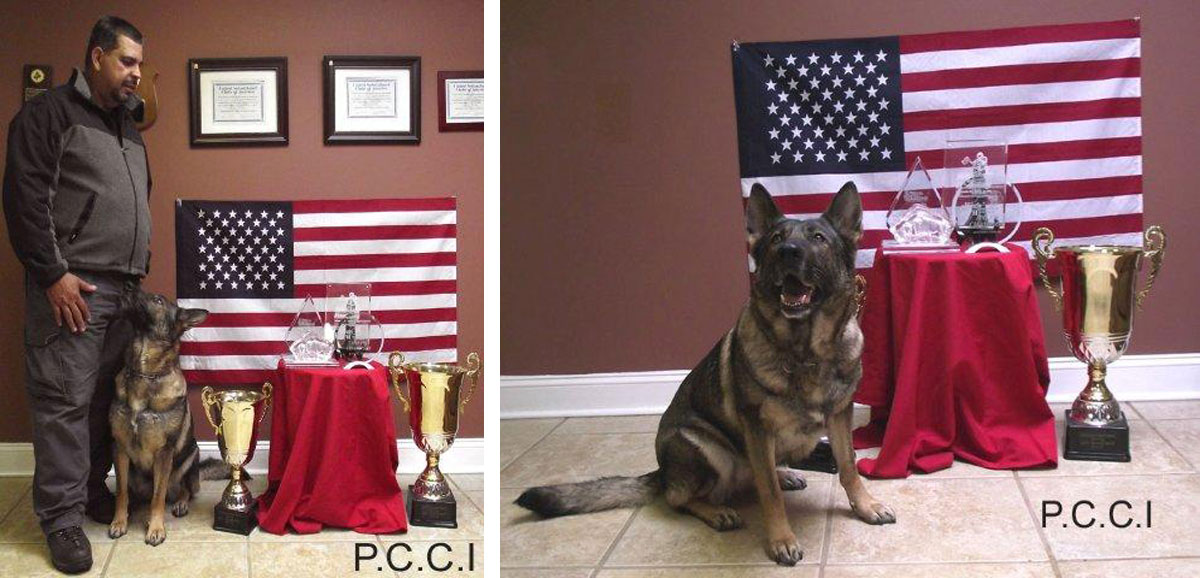 Pro Canine Center Andres and Franka Awards